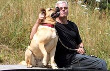 EMMA, Hund, Dogo Canario-Wolfshound-Mix in Neuhausen - Bild 5